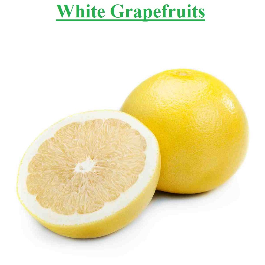 Planet Israel - Fresh Fruits | Fresh Citrus | Fresh Vegetables | Concentrated Pure Fruit Juice - Fresh White Marsh Grapefruit / Grapefruits from Israel