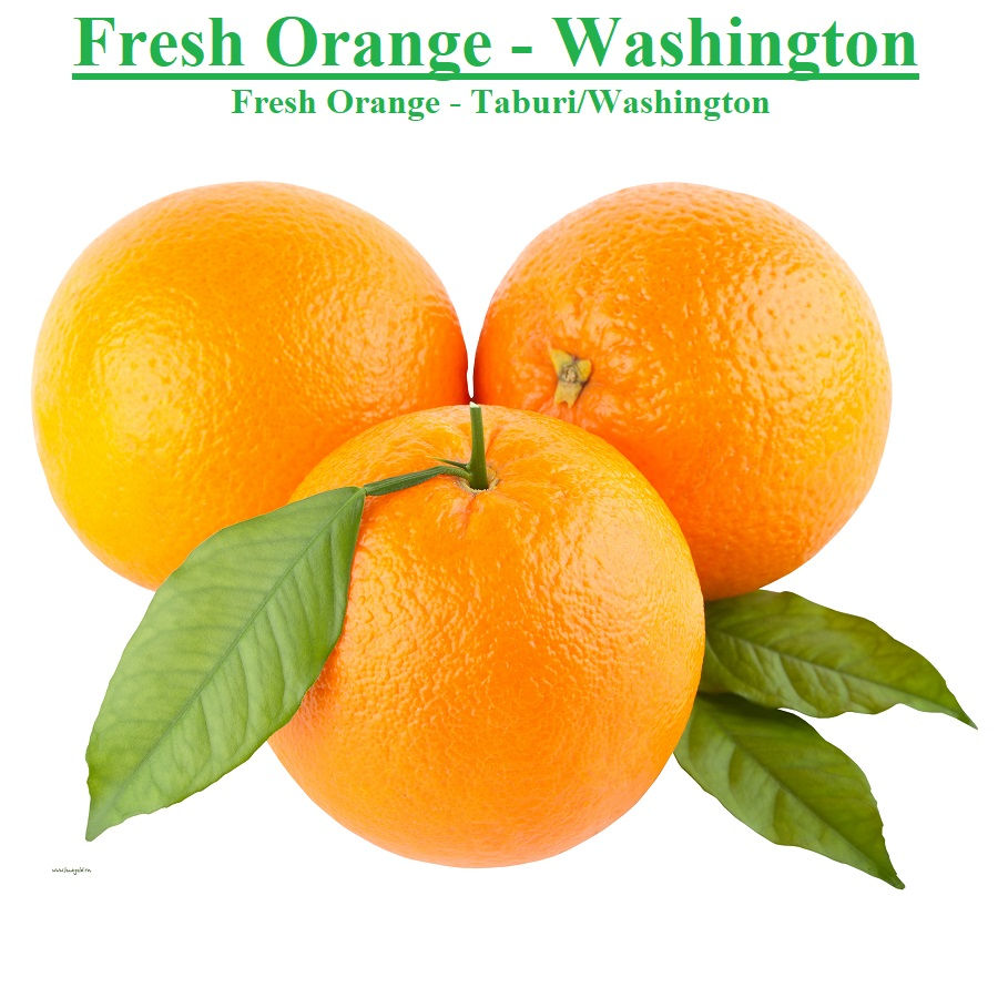 Planet Israel - Fresh Fruits | Fresh Citrus | Fresh Vegetables | Concentrated Pure Fruit Juice - Fresh Washington Taburi Orange / Oranges from Israel